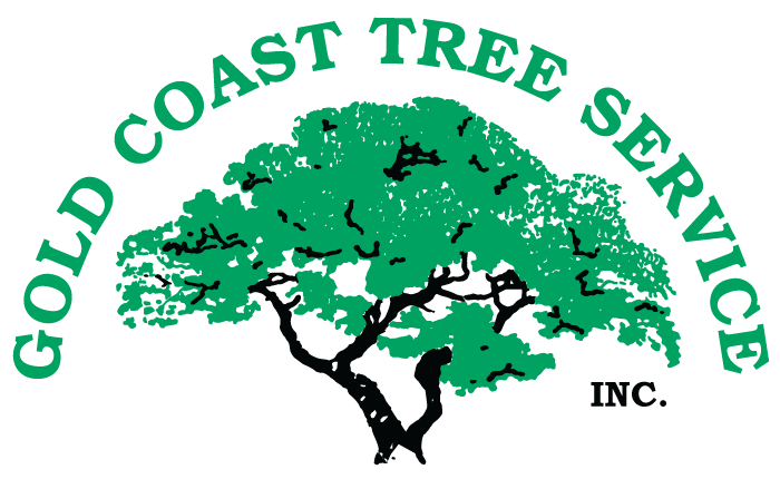 Gold-Coast-Tree-Service-Shift-Nav-logo